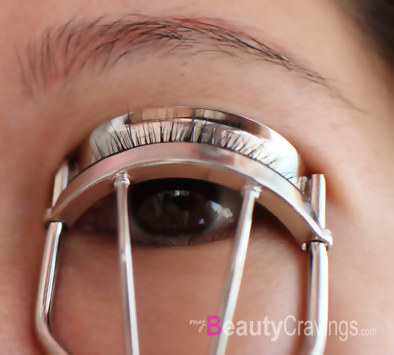 Fits perfectly (Shiseido Eyelash Curler)