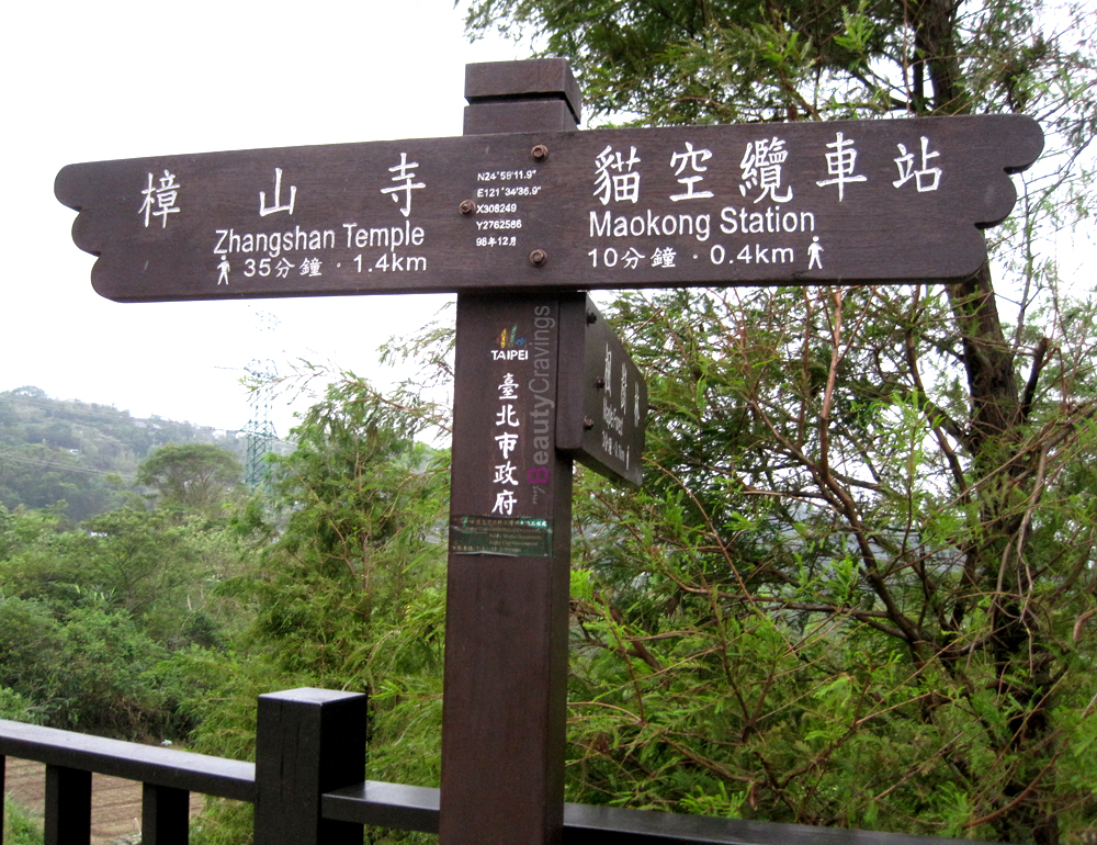 Camphor Tree Trail Taiwan