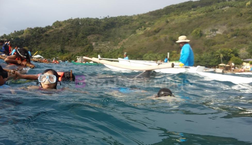 Whale Sharks Oslob