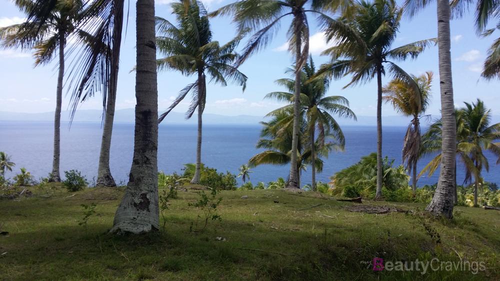 Aquinid to Cebu