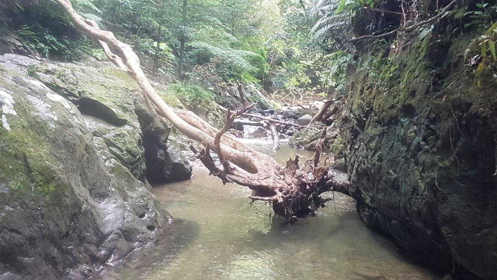 Tataki Falls
