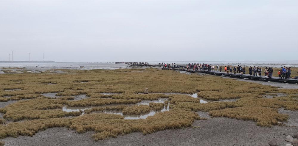 Gaomei Wetlands Taichung
