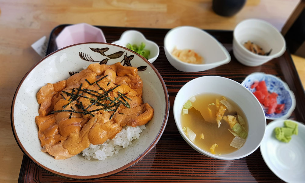 Kouri Island Sea Urchin Lunch