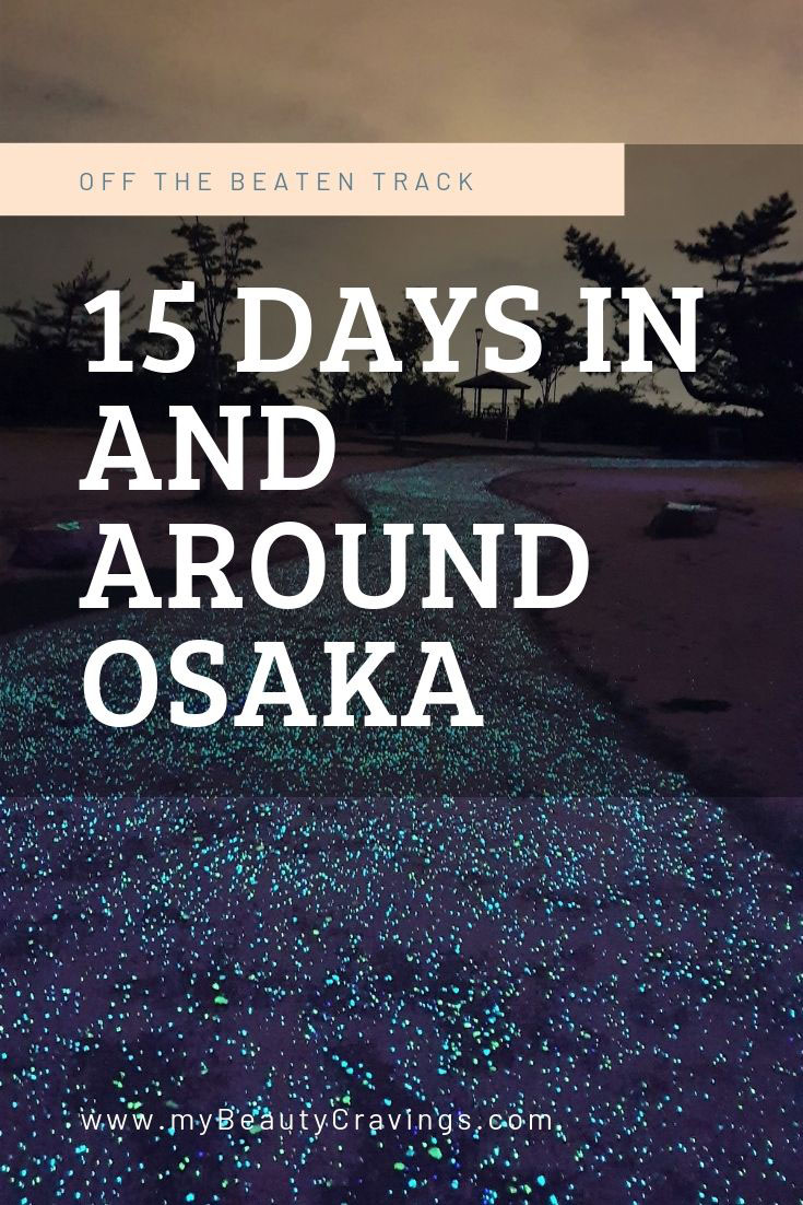 15 Days Osaka Itinerary PIN