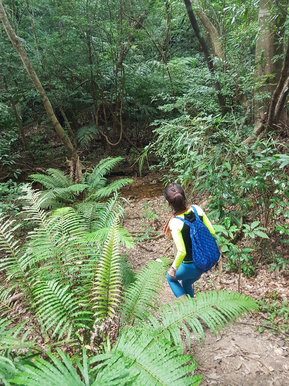 Hike to Hira Falls