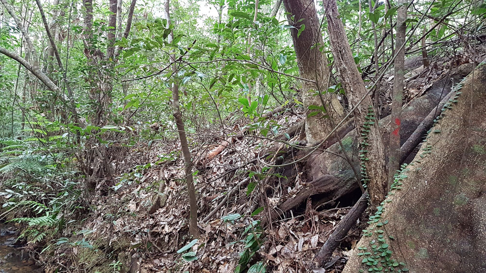 How to hike to Hira Falls