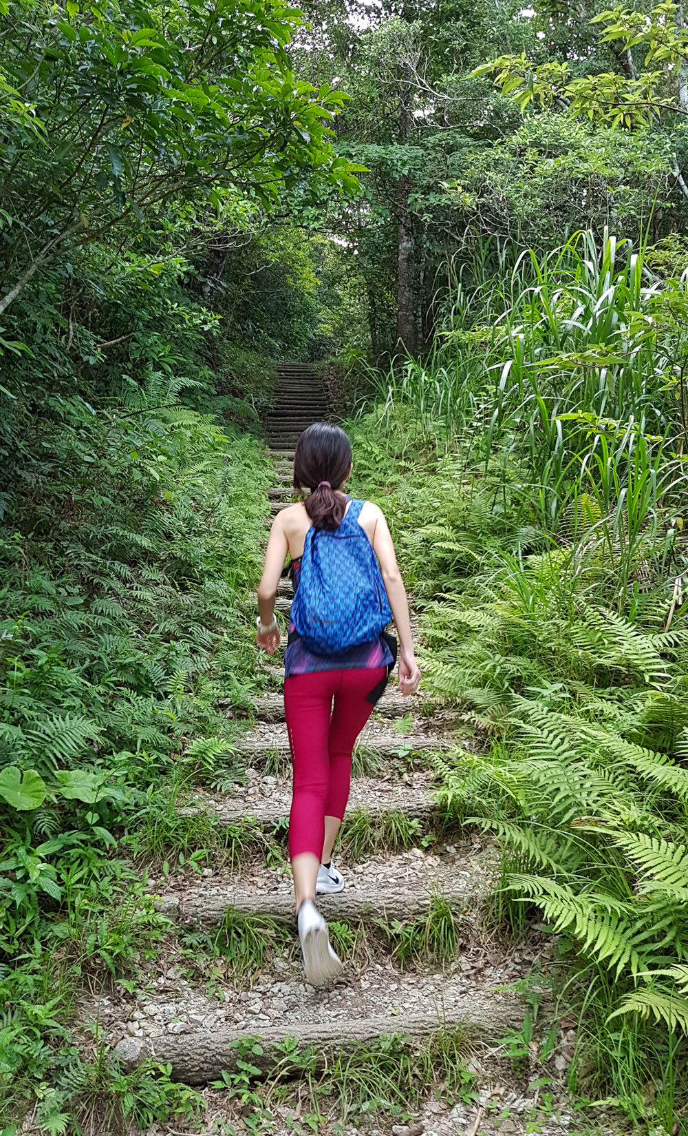 Hiking in Okinawa