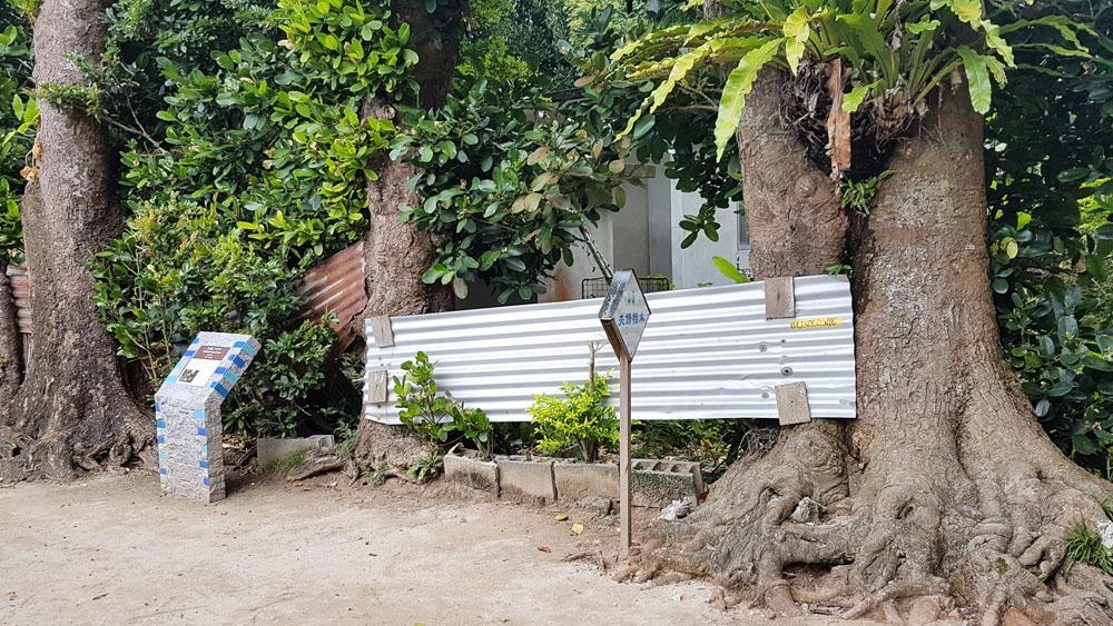 Bise Fukugi Tree Street