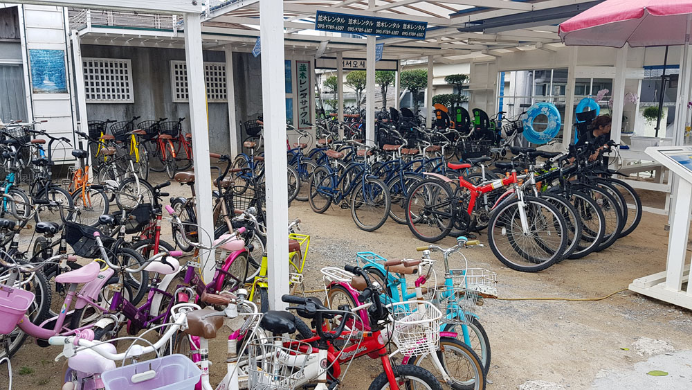 Bise Fukugi Bicycle Rental