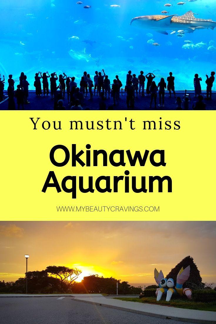 Okinawa Aquarium Ticket Price