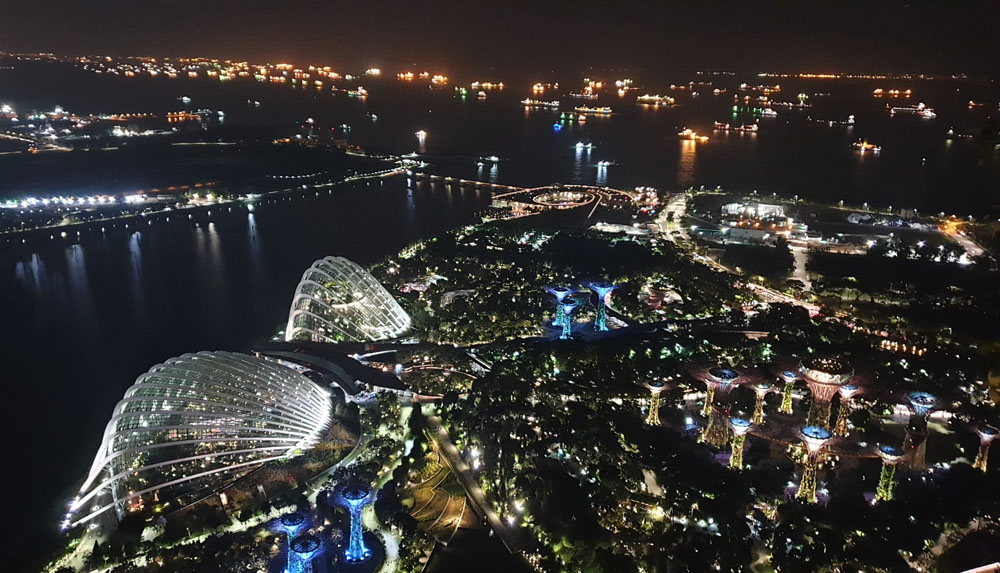 MBS Skybar View of Garden by the Bay