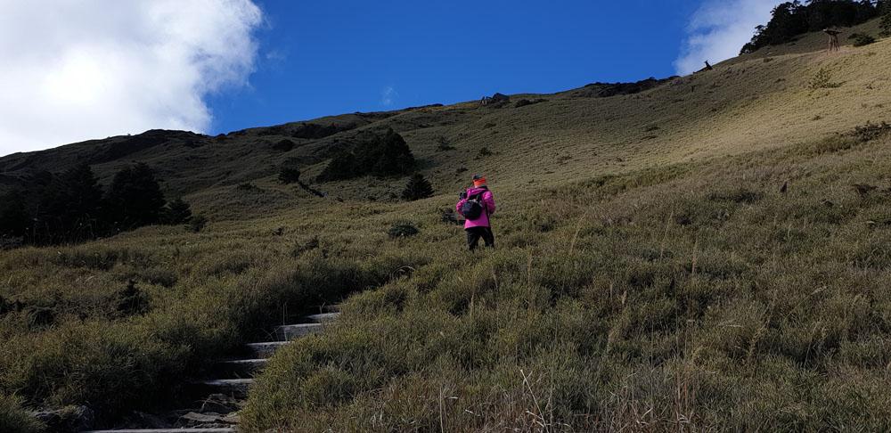 Hiking Hehuanshan East Peak