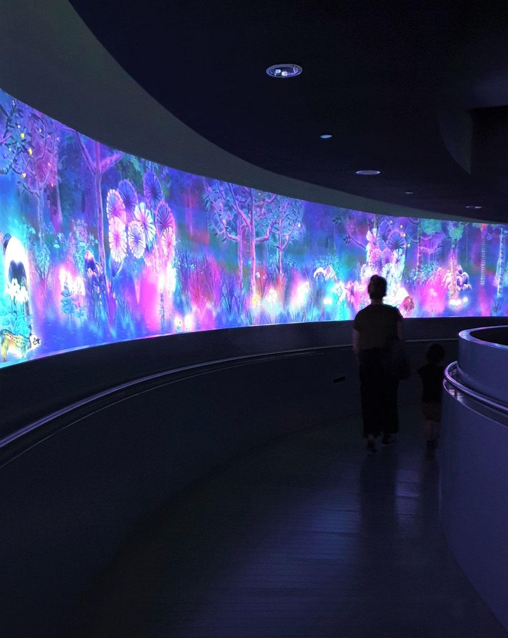 Glass Rotunda - National Museum of Singapore
