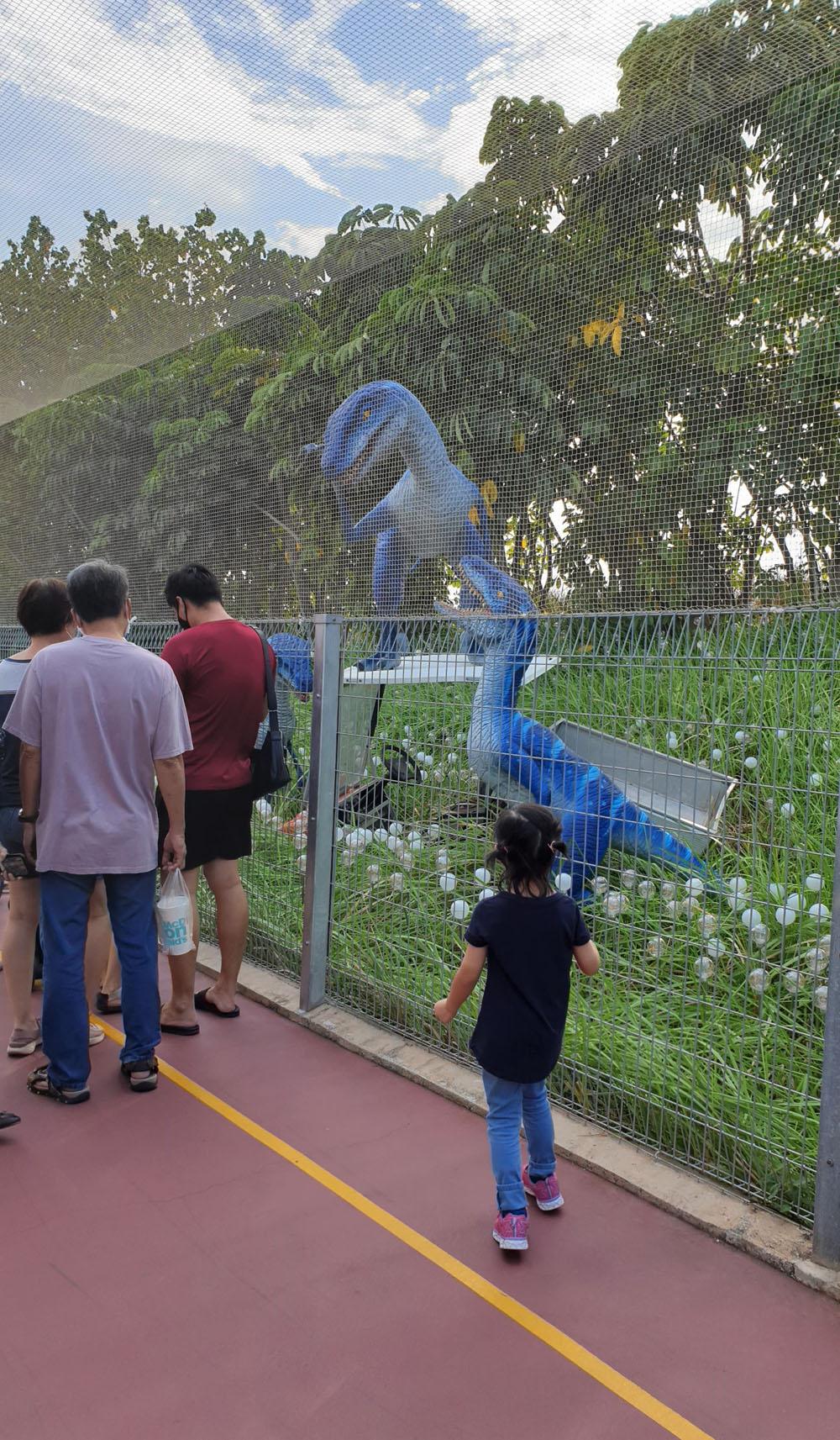 Singapore Jurassic Mile