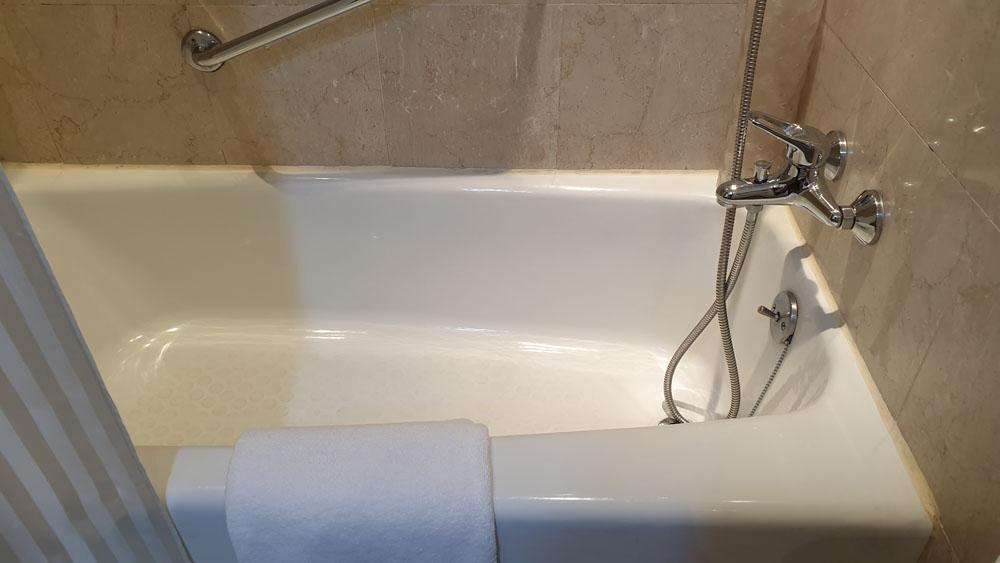 Goodwood Park Hotel Toilet